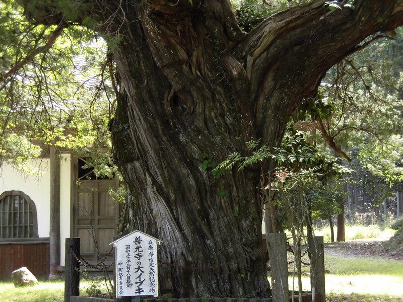 古の播磨を訪ねて~多可町編 その5:播磨広域連携協議会